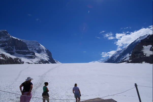 Icefield!