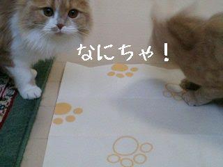 れっくん・ユニちゃん