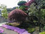 ばあちゃんの家の庭