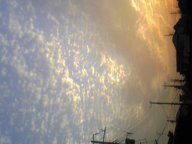 Image031_convert_20091021075214.jpg