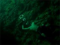 050928_水中の芸術