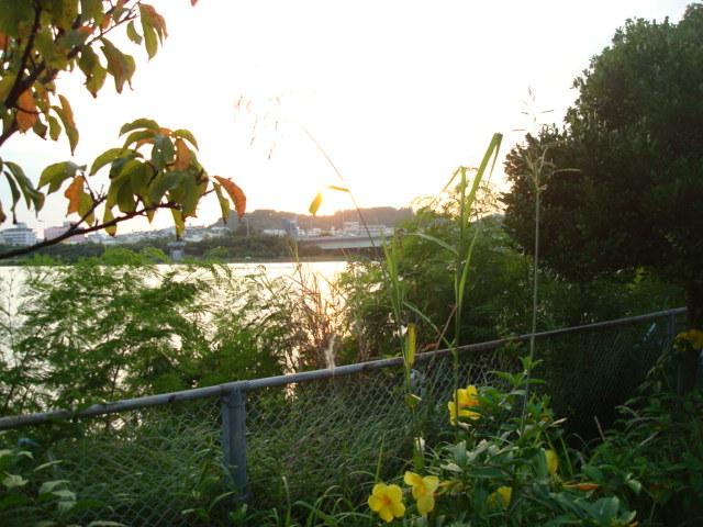 M湖での夕焼け