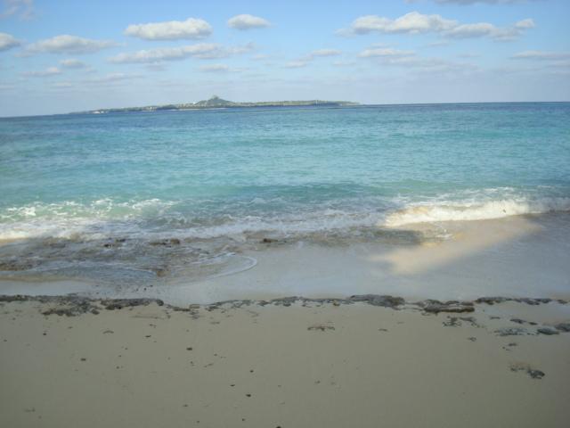 海亀の海岸