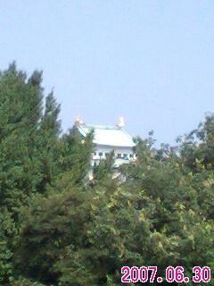 nagoya-castle1.jpg