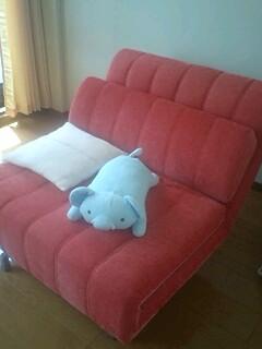 sofa-bed1.jpg