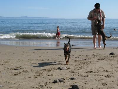 beach0806256