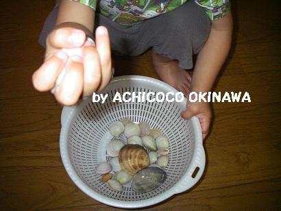 aashiohi12.jpg