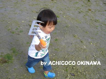 aashiohi13.jpg