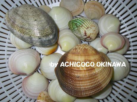 沖縄 潮干狩り 沖縄県 の潮干狩りや釣りに最適な潮汐・潮見表カレンダー