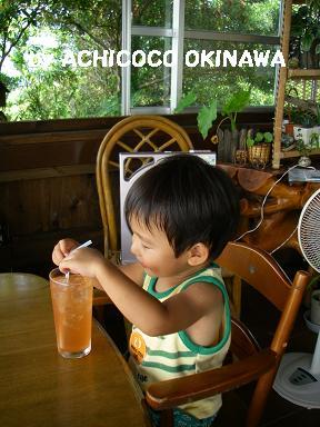 achi-chi-5.jpg