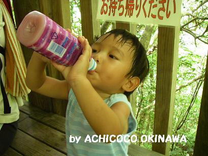 ahijio7.jpg