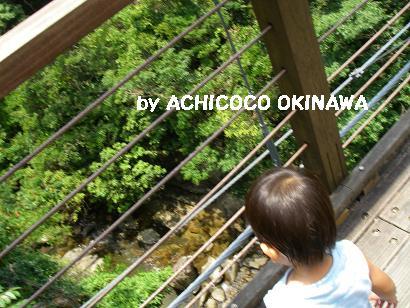 ahijio9.jpg