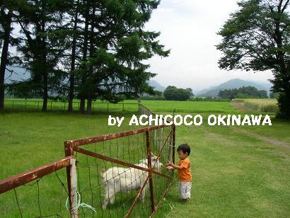 ashinshuu29.jpg