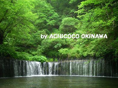 ashinshuu39.jpg
