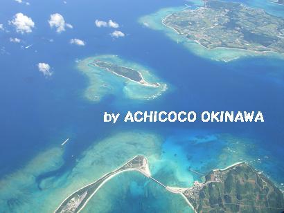 ashinshuu88.jpg