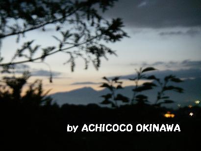 ashinshuu94.jpg