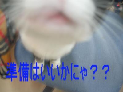 20060517184708.jpg