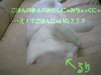 20061019075855.jpg