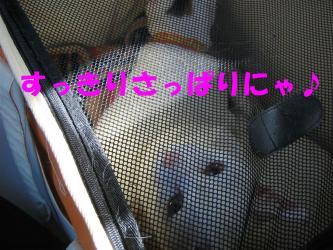 20061108120635.jpg