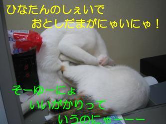 20070108110630.jpg
