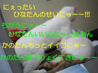 20070108110859.jpg
