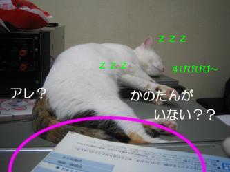 20070112105931.jpg