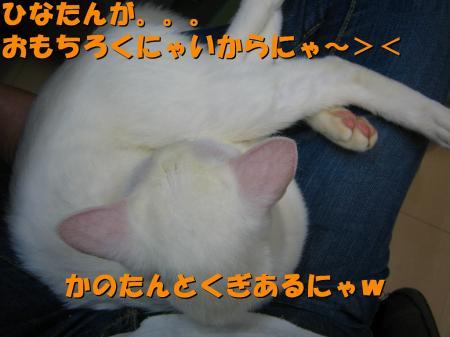 20070405100838.jpg