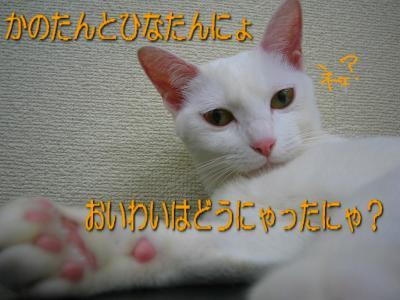 20070412112929.jpg