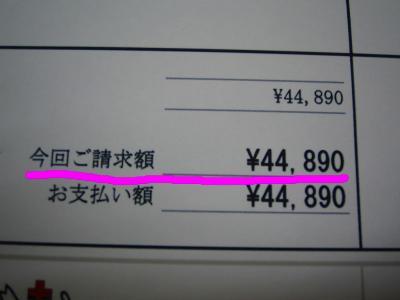20070413120417.jpg