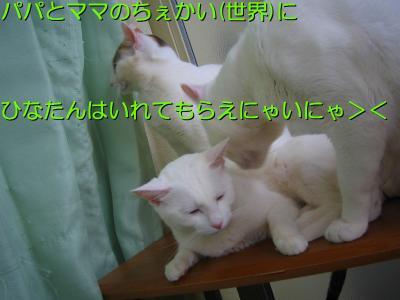20070415082618.jpg