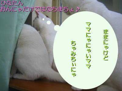 20070415083539.jpg