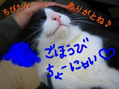 20070504094327.jpg