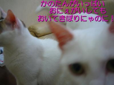 20070710084425.jpg