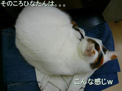 20071020083321.jpg
