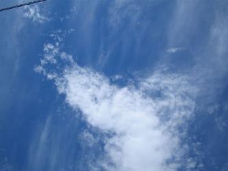 空がたかぁい(>∇<*