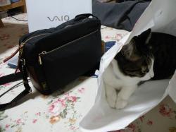 ウプラのバッグとゴン91214