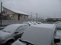 雪が降りました100113