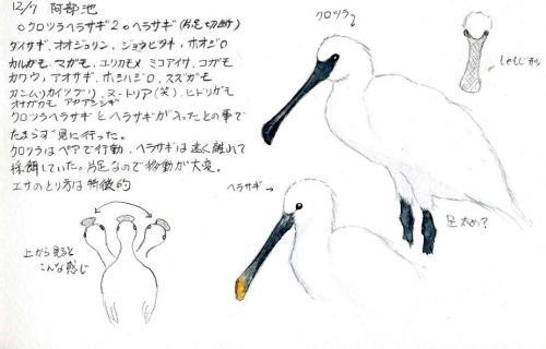 kurotsura