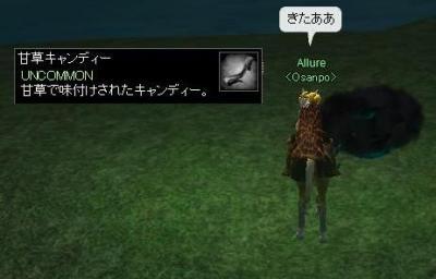 aa4_20081024002504.jpg