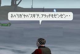 h_20081111011704.jpg
