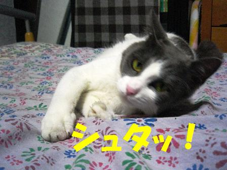 2007_07250014.jpg