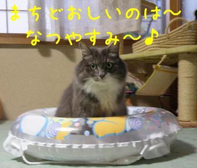 コピー ~ 2008_08020001
