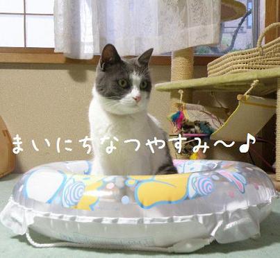 コピー ~ 2008_08020002