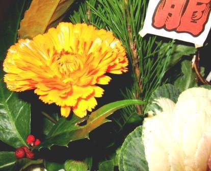 2008花