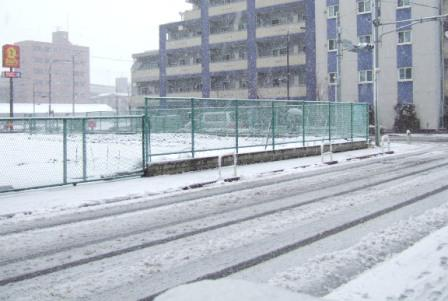 20080203雪