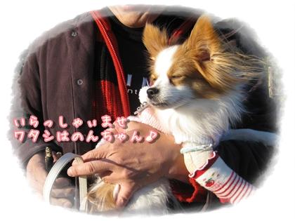 20100107_001.jpg