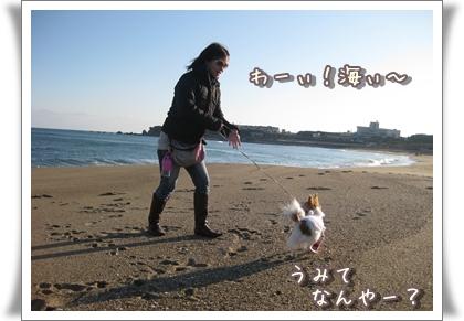 20100107_006.jpg