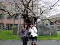 石割桜で記念撮影