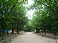 大阪城付近
