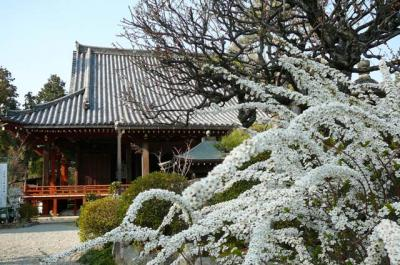 kumeyuki16.jpg